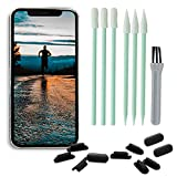 PortPlugs Port Cleaning Kit (17 Piece) Compatible with iPhone 11, X, XS, 8, 8+, 7, 6, iPads, Charging Port Cleaning Tools Includes Dust Plugs, Foam Tipped Swabs and Cleaning Brush (Black)