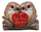 Ebros Romantic Owl Couple Statue Wisdom of The Forests Love Birds Pair of Owls Holding Heart Shaped Sign Saying Owl Always Love You Decorative Figurine 5.25' Tall (1)