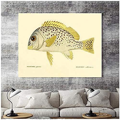 Canvas print,Woondecoratie Print Picture Poster Schilderijen Horizontale rechthoek Realistisch visspectrum Zeevis-60x80cm