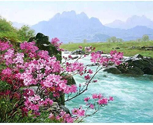 DIY schilderij met cijfers, roze bloem rijst, canvasdruk, wanddecoratie voor kinderen, volwassenen, 40 x 50 cm