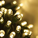 LED Craft Lights, LED String Lights Curtain Lights for Crafting – Curtain Lights Wedding, Small Craft LED Lights, Green Wire (35 lights, 13 ft, Warm White)