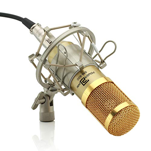 Powerpak BM-800 Gold Silica Gel Professional Condenser Microphone with Metal Shock Mount (Requires Phantom Power Supply or Sound Card Only)