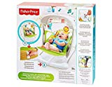 Fisher-Price Rainforest Tomar Along Columpio y Asiento
