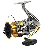 SHIMANO Sedona 6000 FI, Spinning Angelrolle mit Frontbremse