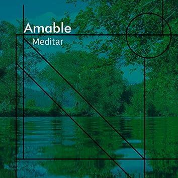 # 1 Album: Amable Meditar