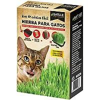 Semillas Amomáticas - Hierba para Gatos - Batlle
