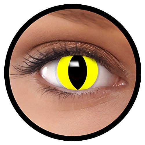 Farbige Kontaktlinsen gelb Katze + Behälter, weich, ohne Stärke in gelb als 2er Pack (1 Paar)- angenehm zu tragen und perfekt für Halloween, Karneval, Fasching oder Fastnacht Kostüm