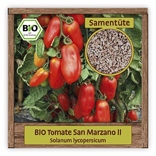 BIO Tomaten Samen Romatomate Saatgut Gemüsesamen alte historische Sorte San Marzano II