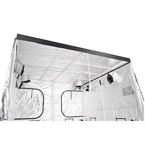 iPower Grow Tent GLTENTXL4