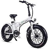 Bicicleta Eléctrica Plegable Bicicleta eléctrica de nieve, bicicletas eléctricas rápidas para adultos plegables de bicicleta eléctrica 500W 48V 15AH 20 '4.0 Pantalla LCD de bicicleta E-Bike E-Bike con