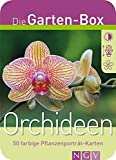 Orchideen. Die Garten-Box. 50 farbige Pflanzenporträt-Karten