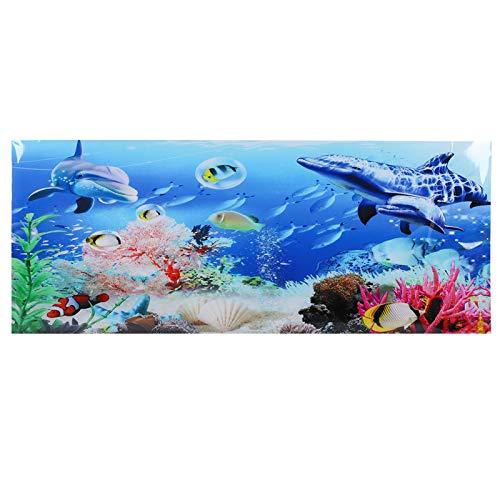 cersalt Aquarium Hintergrund, Aquarium dekorative Bilder, Bilder Aquarium für Aquarien Aquarien