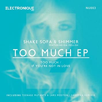 Too Much EP