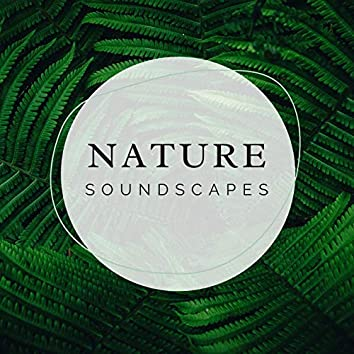 Nature Soundscapes: Soundscapes with Relaxing Music and Nature Sounds, Mother Nature Soundscapes