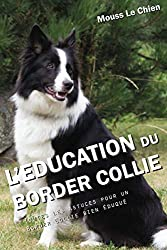 L'EDUCATION DU BORDER COLLIE