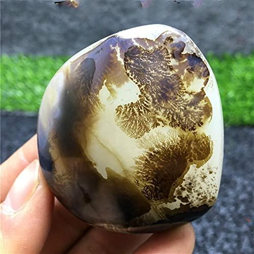 YINGBBH Natürlicher Achat-Rohstein Madagaskar F Raues Meer Chalcedon Agate Natürliche Achat Natursteinmineralien Dekorative Steine Meerglassteine Wohnzimmerdekoration (Size : 800g)