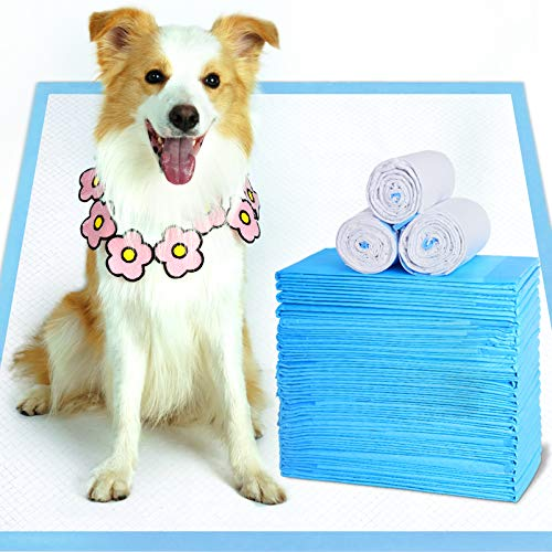 """WISPET Extra-Large Dog Pee Pads and Puppy Training Pads 28""""x34""""-40 Count - Super Absorbent & Heavy Duty XLarge Potty Pads for Dogs and Pet Pads"""