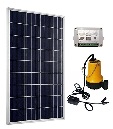 ECO-WORTHY Kit de bomba solar: panel solar de 100W + Bomba de agua solar + regulador solar de 15A