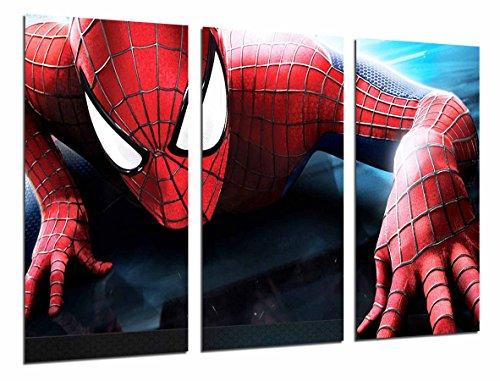 Cuadro Fotográfico Spiderman