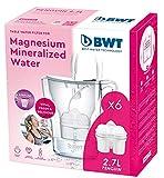 BWT Penguin Blanca Pack 6 filtros - Jarra filtradora de agua con...