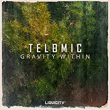 Gravity Within