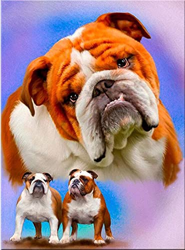 5D Diamond Pintura de Diamantes diseño - Tres perros -Juego Taladro Completo Artístico para Adultos o Niño