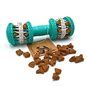 PetFun Everlasting Dental Treat Healthy Rubber Super Resistant Bone Chew Toy for Small and Big Pets