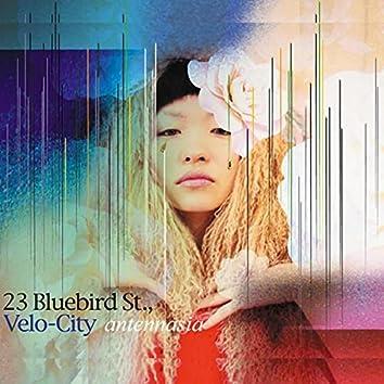 23 Bluebird St., Velo-City (Remastered)