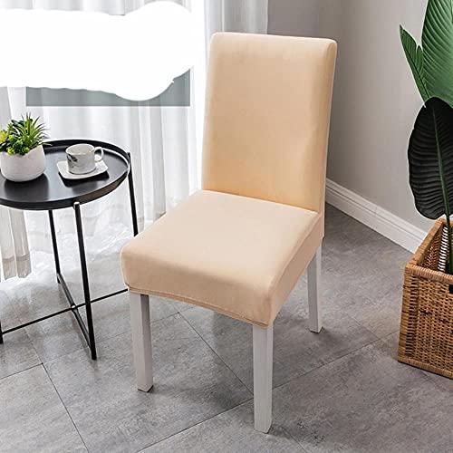 KTISMYRBBGFFSFD 1/2/4/6 STK. Stuhlbezug für Room Plain Dining Elastic Chair Schonbezug Offic Case Stretch Stuhlbezug für Hochzeit Hotel Bankett-Champagner, 2 STK
