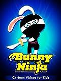 Cartoons Videos For Kids - Bunny Ninja