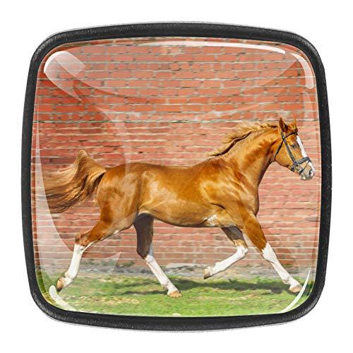 Bücherregal-Knöpfe, Design: laufendes braunes Pferd, Schrankknöpfe, Halter, Glas, Kinderknäufe für Jungen, 4 Stück, 3 x 2,1 x 2 cm