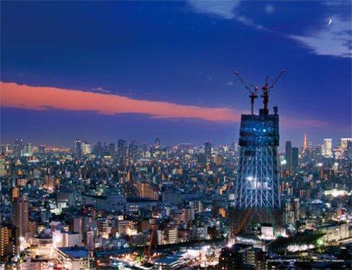 ジグソーパズルプチ2 500ピース 東京スカイツリー 夜景日和 41-45