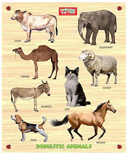 Zitto Premium Wooden Domestic Animals Educational Puzzle Toy