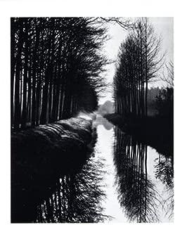 Best brett williams art Reviews