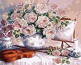 OKOUNOKO Bricolaje preimpreso Lienzo Pintura al óleo Regalo Flor y violín para Adultos niños Tienen Marco para la Pared del hogar, 50x60 cm