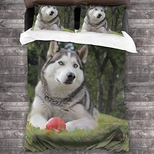 3-Piece Bedding Set Adult White And Gray Siberian Husky Lying On Grass 100% Natural Polyester,1 Duvet Cover And 2 Pillowcases,Ultra Soft And Breathable