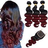 Ombre Brazilian Hair Body Wave Bundles with Closure,Ombre Brazilian Virgin Hair Human Hair Weave Two Tone Black to Burgundy (T1B/99J,14 16 18+12)