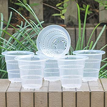 Meshpot 4 Inch Clear Plastic Orchid Pots with Holes - 6 Pack