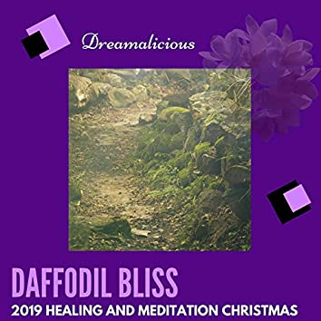 Daffodil Bliss - 2019 Healing And Meditation Christmas