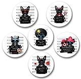 Merchandise for Fans Französische Bulldogge