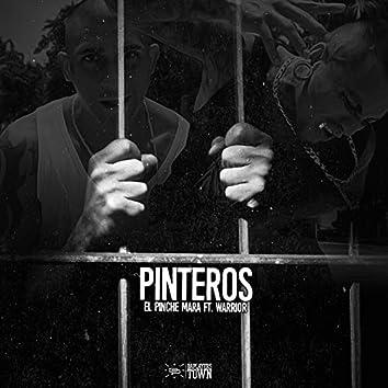 Pinteros