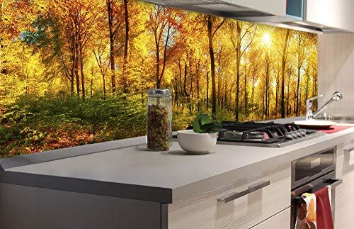 DIMEX LINE Küchenrückwand Folie selbstklebend SONNIGER Wald | Klebefolie - Dekofolie - Spritzschutz für Küche | Premium QUALITÄT - Made in EU | 180 cm x 60 cm