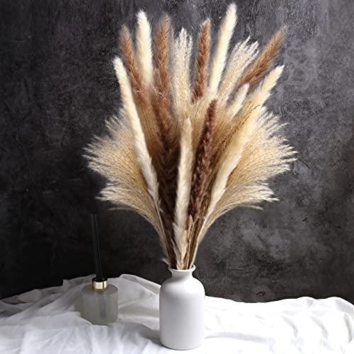 """60 Pcs Dried Pampas Grass Decor - 19"""" Natural Pompas Floral/ Dried Pompous Grass for Flower Arrangements Wedding Home Decor(15 Pcs White Pampas Grass & 15 Pcs Brown Pampas Grass& 30 Pcs Reed Grass)"""