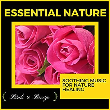 Essential Nature - Soothing Music For Nature Healing