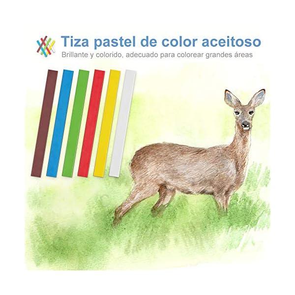 74 PCS Lápices de Colores con Lápices de Dibujo Lapices Acuarelables Carbón Set de Herramientas de Dibujo