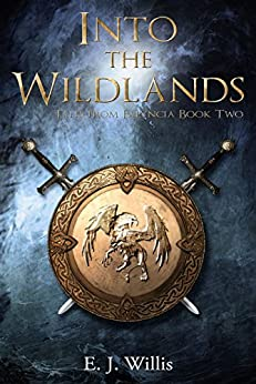 Into the Wildlands: Tales from Falyncia Book Two by [E. J. Willis]