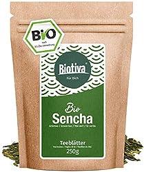 Sencha green tea organic 250g - top price - storage pack for 100 cups - mild, slightly grassy, fine dry and flowery - Fairbiotea certificate - DE-ÖKO-005