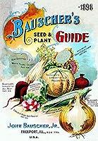 1898年バウシャーのセロリ野菜の種、ブリキの看板ヴィンテージ面白い生き物鉄の絵画金属板ノベルティ