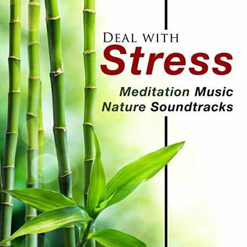 Relaxing Mindfulness Meditation Relaxation Maestro & Pure Relaxing Spa Music & Direction Relax