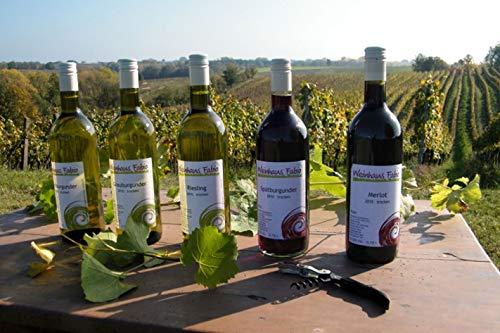 Jochen Schweizer Geschenkgutschein: Weinbergwanderung mit Weinverkostung in Rheinland-Pfalz